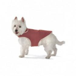 "Dog Gone Smart Wear 10"" Red"