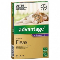 Advantage Cats over 4kg...