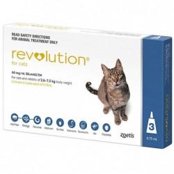 Revolution Cats 3s